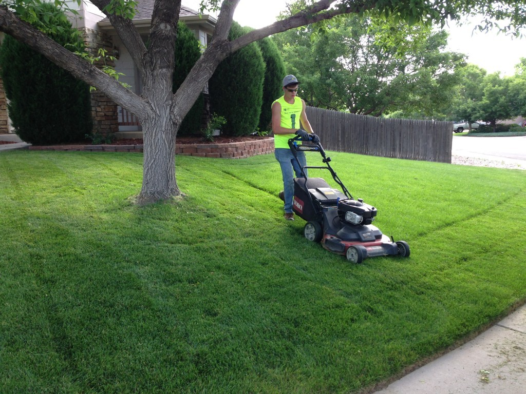 Lawn Service-Spring Hill FL Outdoor Living & Designs-We offer Landscape Design, Outdoor Patios & Pergolas, Outdoor Living Spaces, Stonescapes, Residential & Commercial Landscaping, Irrigation Installation & Repairs, Drainage Systems, Landscape Lighting, Outdoor Living Spaces, Tree Service, Lawn Service, and more.