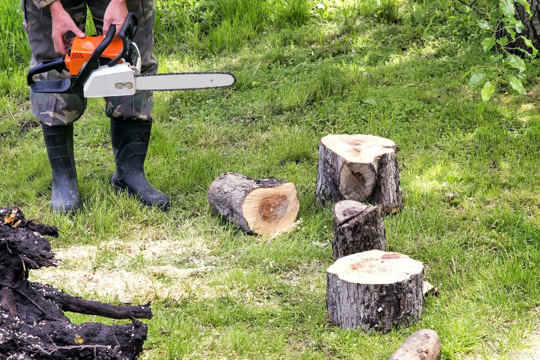 Tree Service-Spring Hill FL Outdoor Living & Designs-We offer Landscape Design, Outdoor Patios & Pergolas, Outdoor Living Spaces, Stonescapes, Residential & Commercial Landscaping, Irrigation Installation & Repairs, Drainage Systems, Landscape Lighting, Outdoor Living Spaces, Tree Service, Lawn Service, and more.